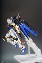 mb_strike_freedom_012